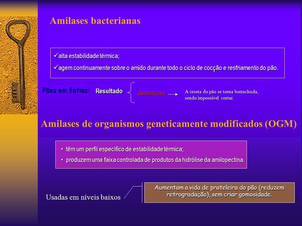 Amilases de organismos geneticamente modificados (OGM)