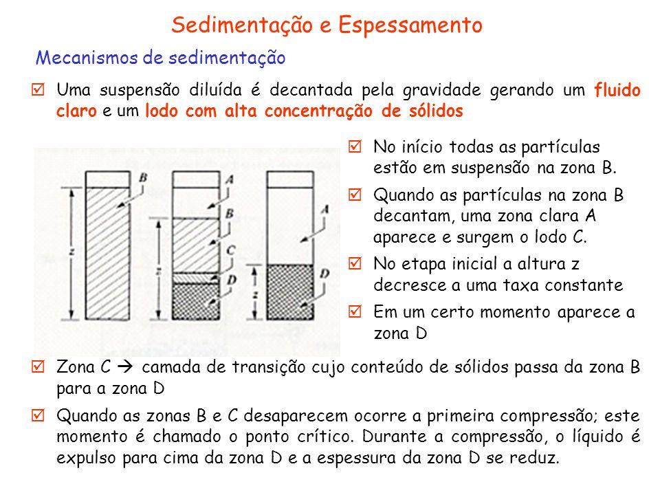 Sedimentação e Espessamento