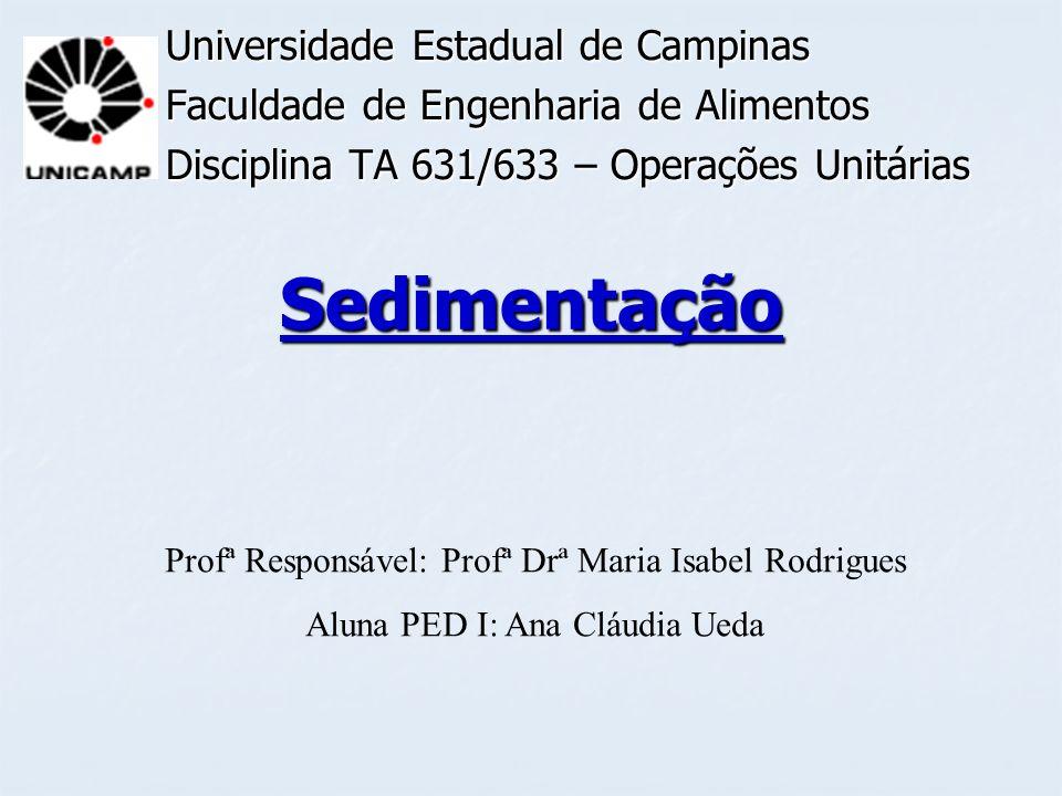 Sedimentação Universidade Estadual de Campinas