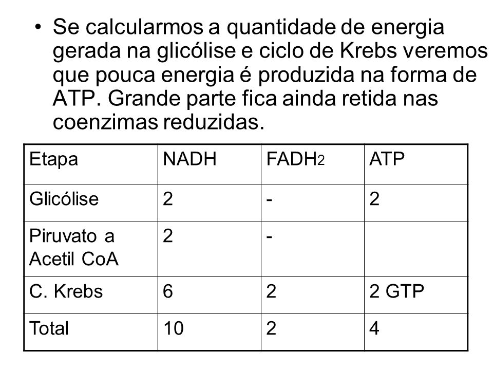 Se calcularmos a quantidade de energia gerada na glicólise e ciclo de Krebs veremos que pouca energia é produzida na forma de ATP. Grande parte fica ainda retida nas coenzimas reduzidas.