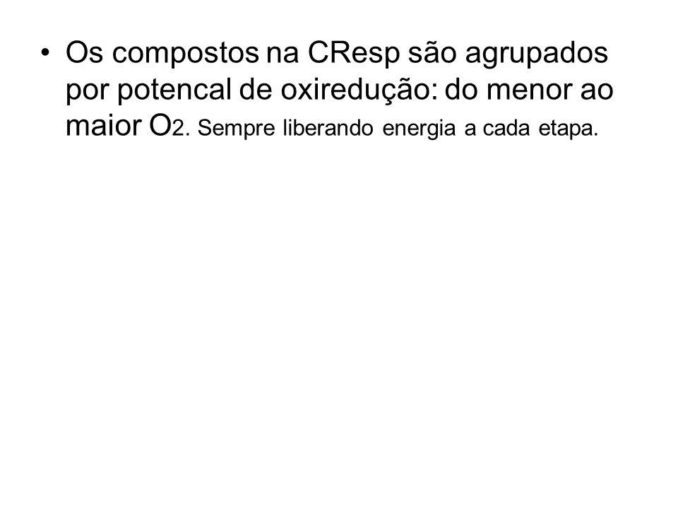 Os compostos na CResp são agrupados por potencal de oxiredução: do menor ao maior O2.