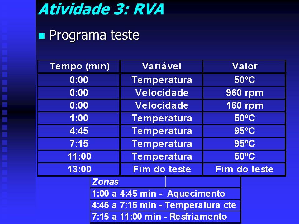 Atividade 3: RVA Programa teste
