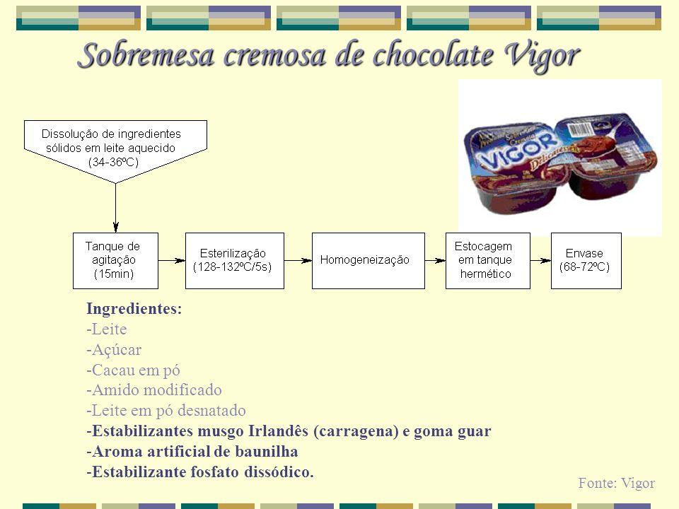 Sobremesa cremosa de chocolate Vigor