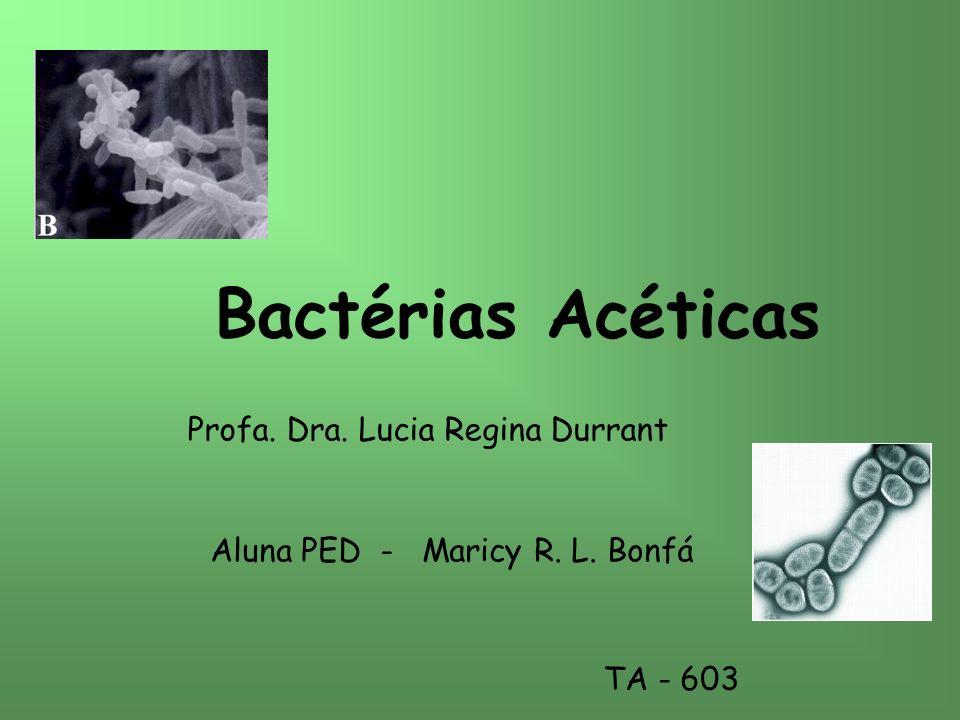 Bactérias Acéticas Profa. Dra. Lucia Regina Durrant