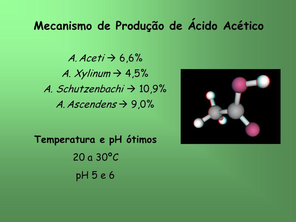 Mecanismo de Produção de Ácido Acético Temperatura e pH ótimos
