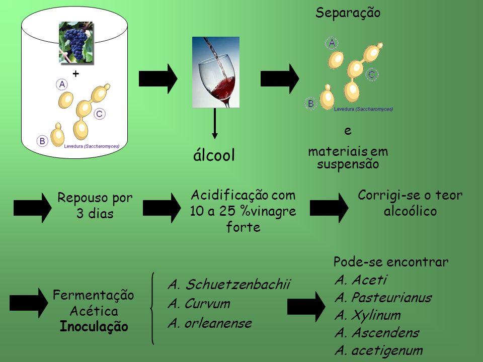 álcool + Separação e materiais em suspensão Repouso por 3 dias