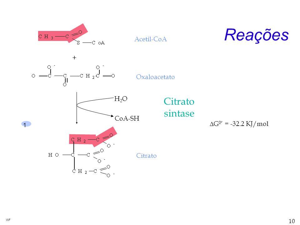 Reações Citrato sintase + Acetil-CoA Oxaloacetato H2O CoA-SH