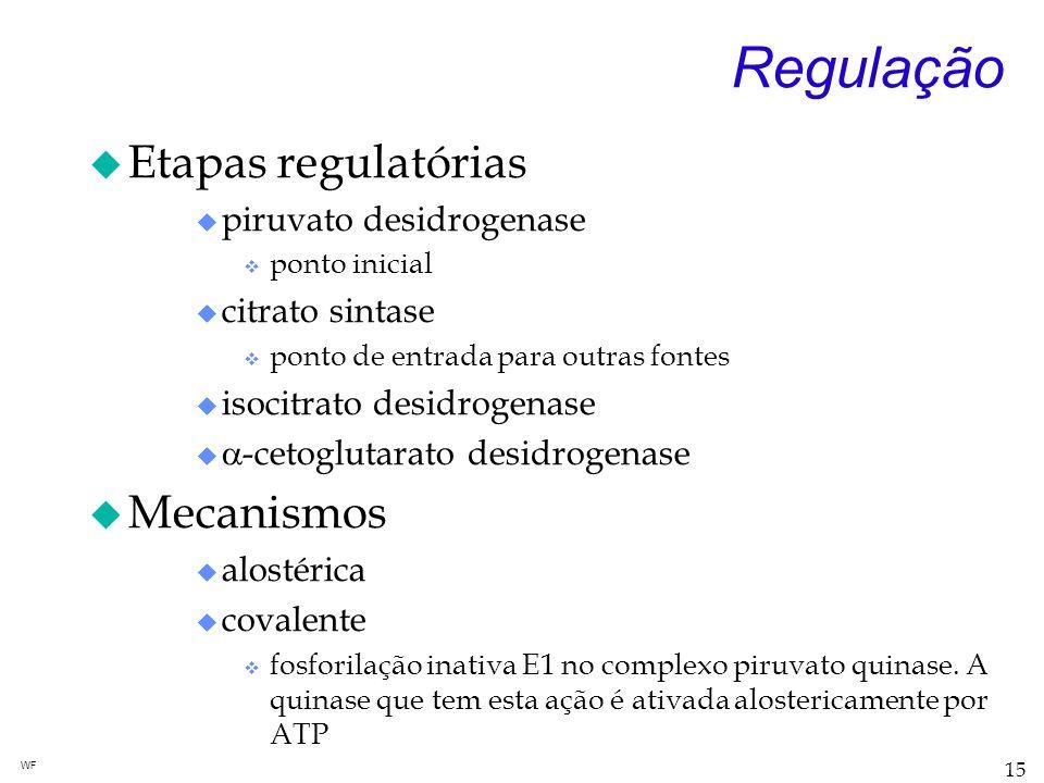 Regulação Etapas regulatórias Mecanismos piruvato desidrogenase