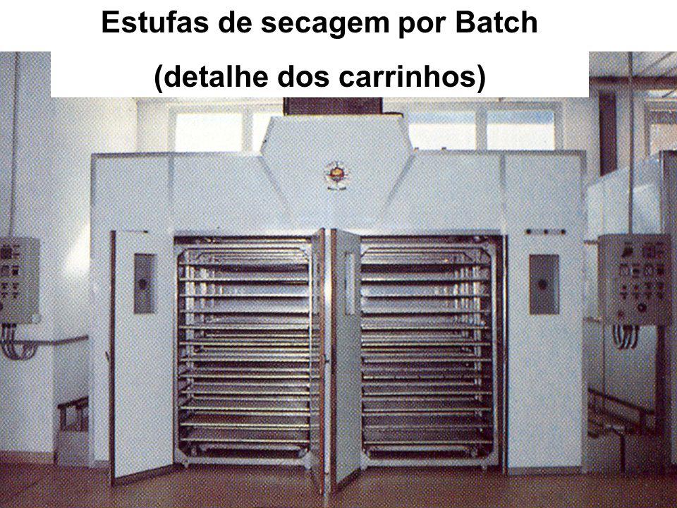 Estufas de secagem por Batch (detalhe dos carrinhos)