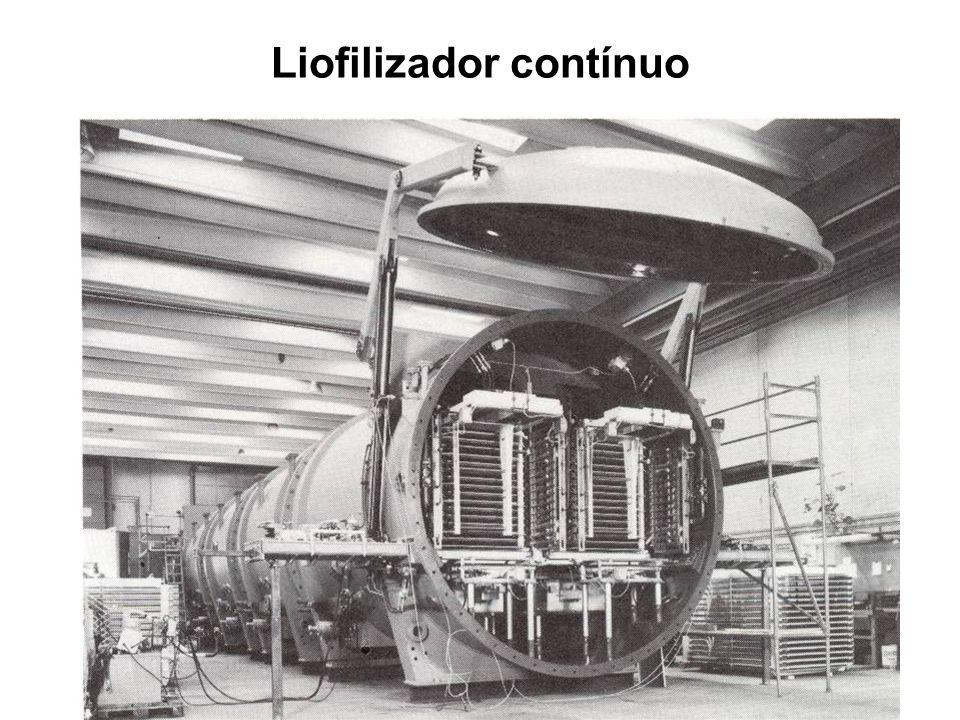 Liofilizador contínuo