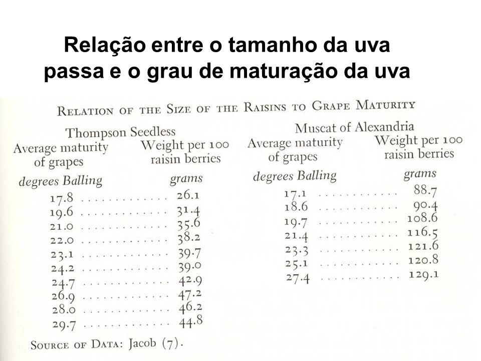 Relação entre o tamanho da uva passa e o grau de maturação da uva
