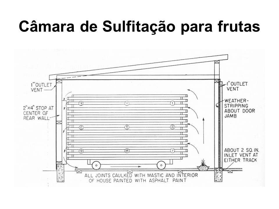 Câmara de Sulfitação para frutas