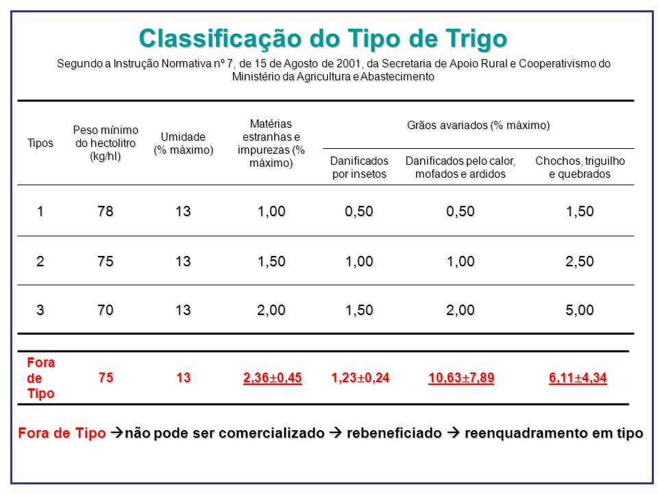 Classificação do Tipo de Trigo