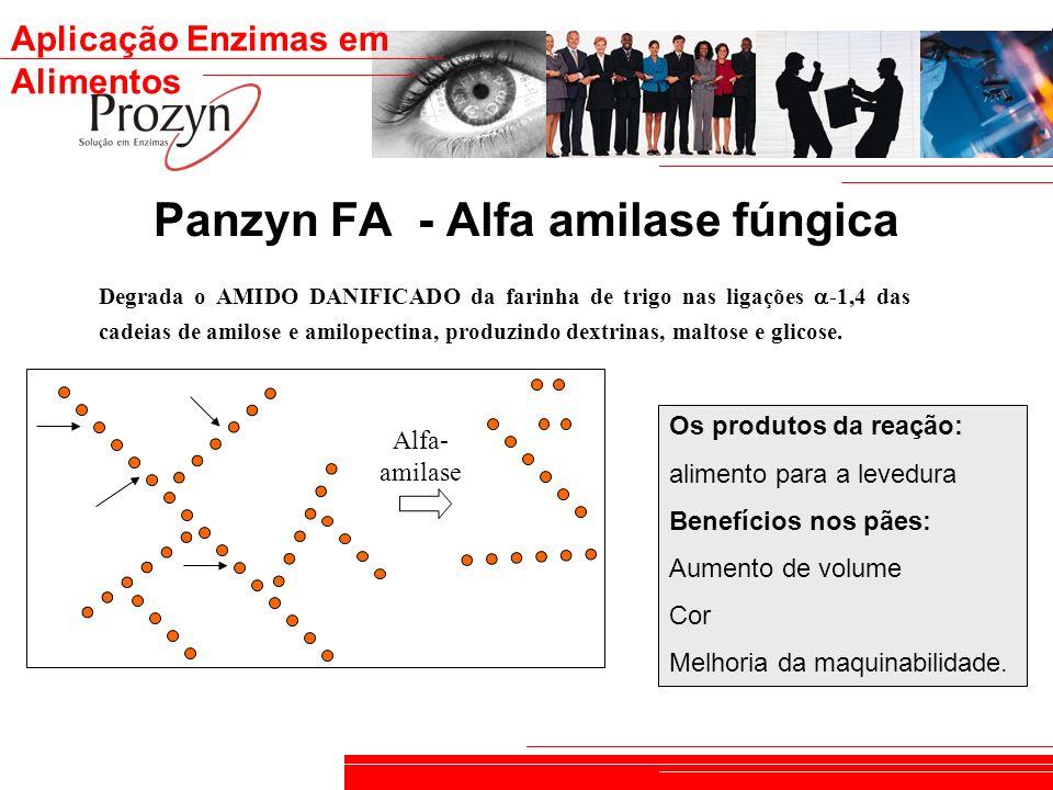 Panzyn FA - Alfa amilase fúngica