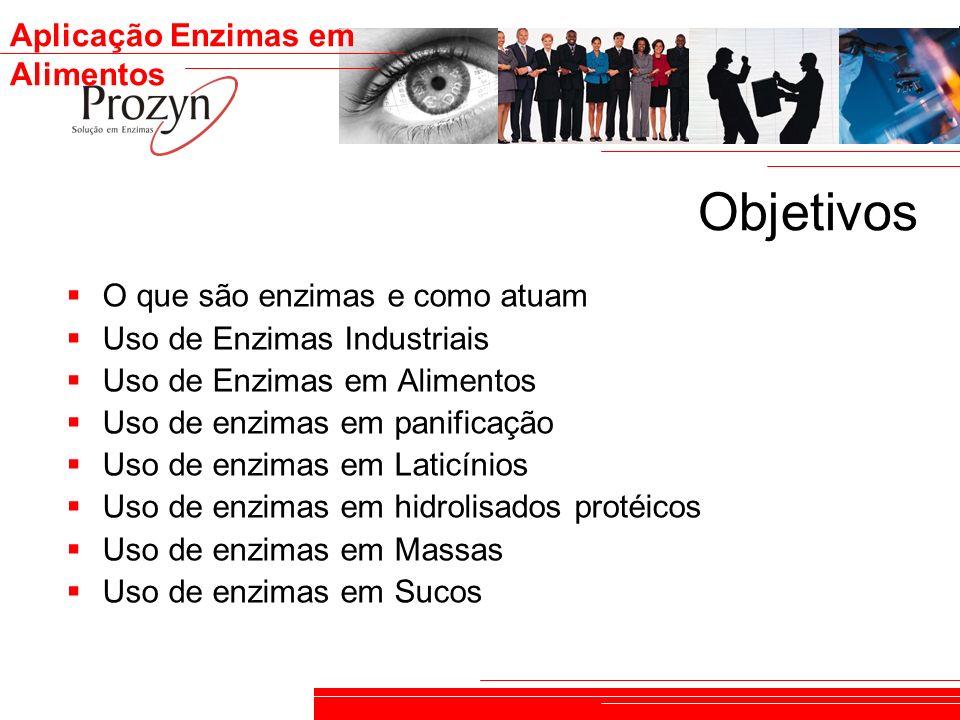 Objetivos O que são enzimas e como atuam Uso de Enzimas Industriais