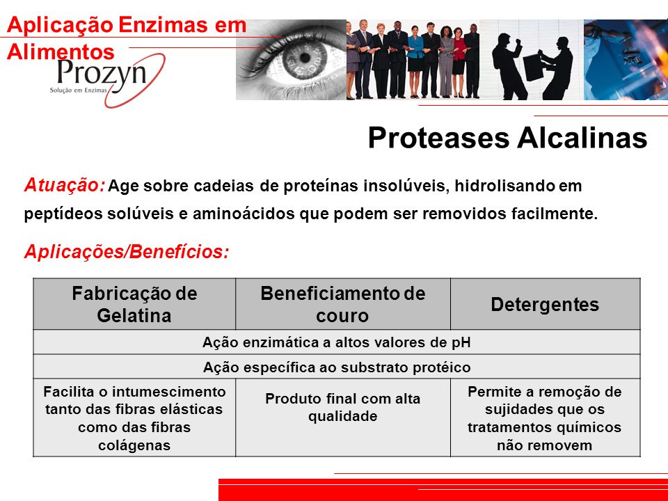 Proteases Alcalinas