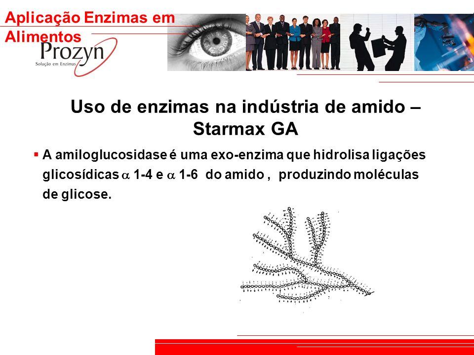 Uso de enzimas na indústria de amido – Starmax GA