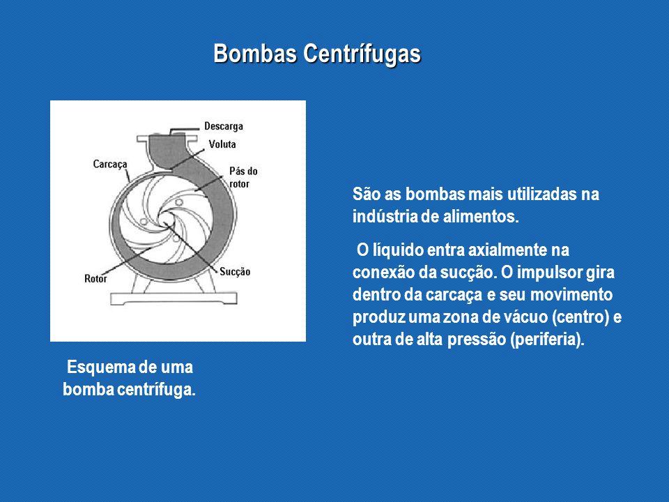 Bombas Centrífugas Esquema de uma bomba centrífuga.