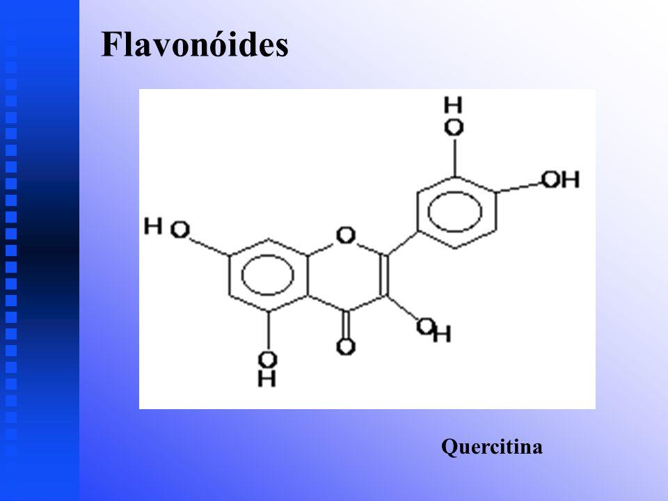 Flavonóides Quercitina