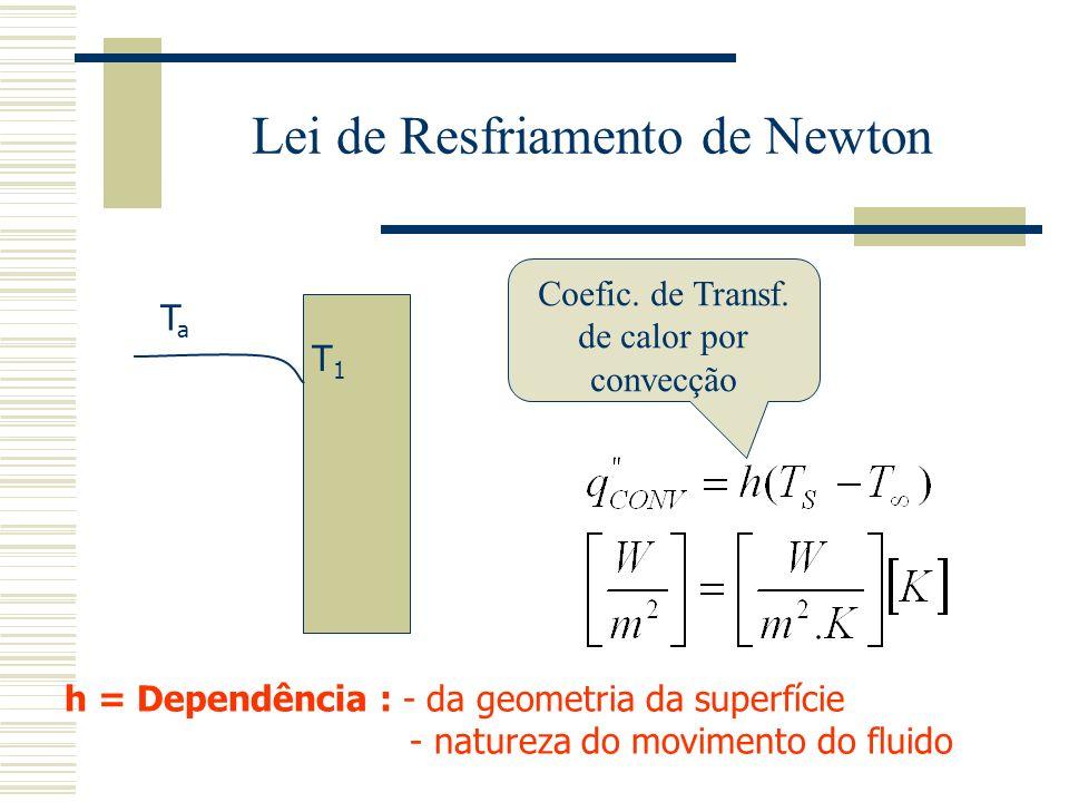 Lei de Resfriamento de Newton