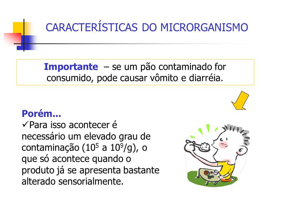 CARACTERÍSTICAS DO MICRORGANISMO