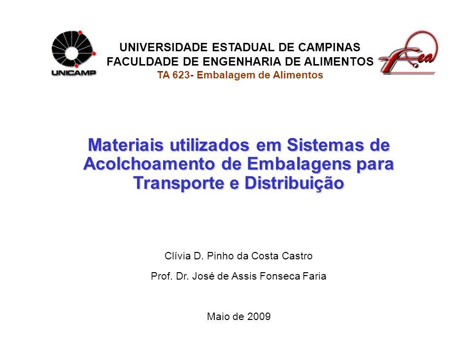 UNIVERSIDADE ESTADUAL DE CAMPINAS FACULDADE DE ENGENHARIA DE ALIMENTOS TA 623- Embalagem de Alimentos