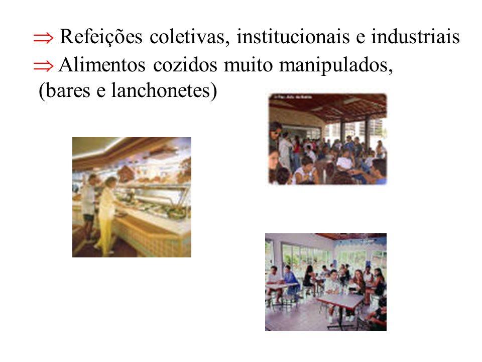  Refeições coletivas, institucionais e industriais