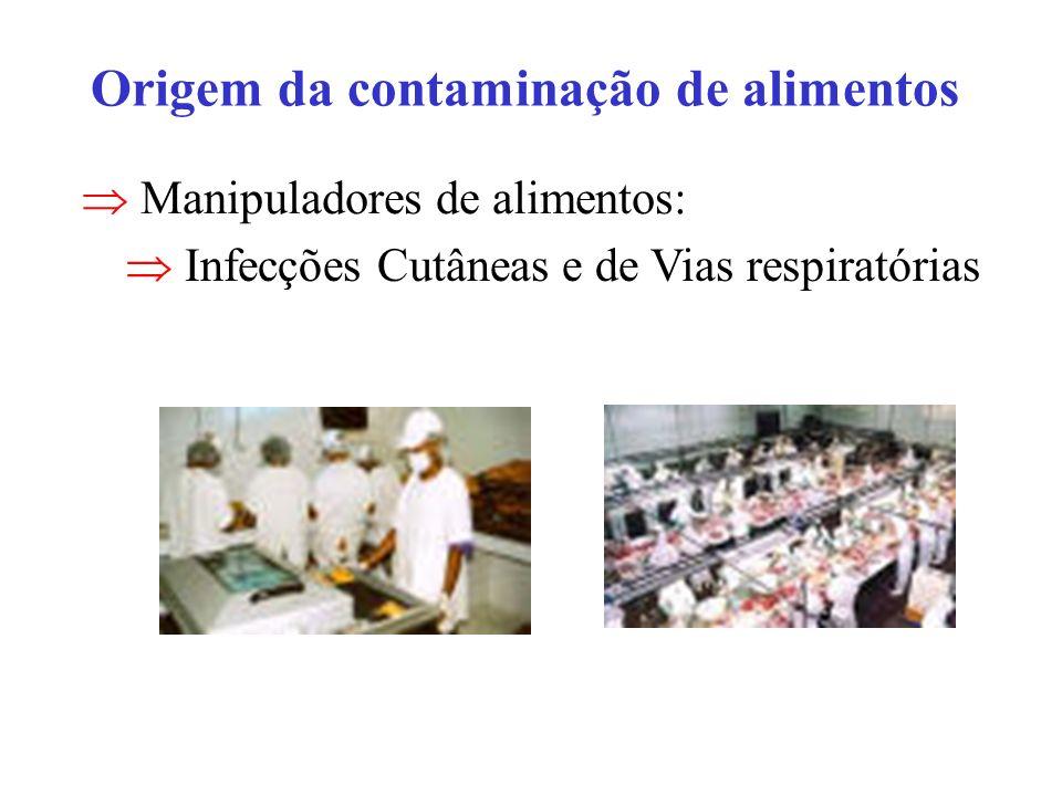 Origem da contaminação de alimentos