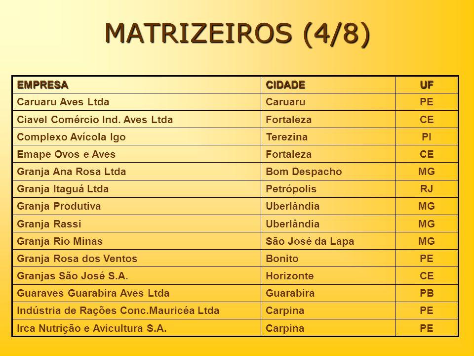MATRIZEIROS (4/8) PE Caruaru Caruaru Aves Ltda CE Fortaleza