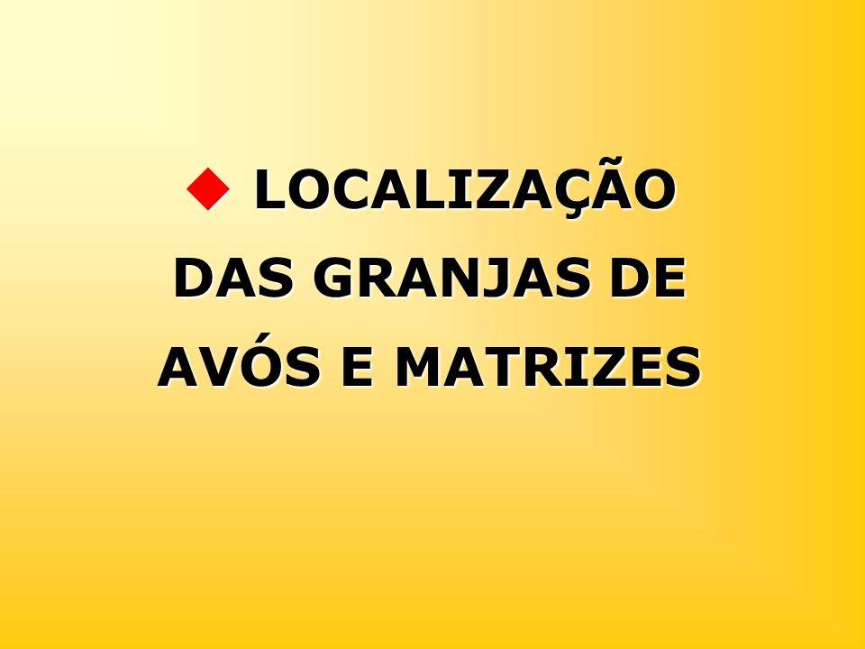 LOCALIZAÇÃO DAS GRANJAS DE AVÓS E MATRIZES