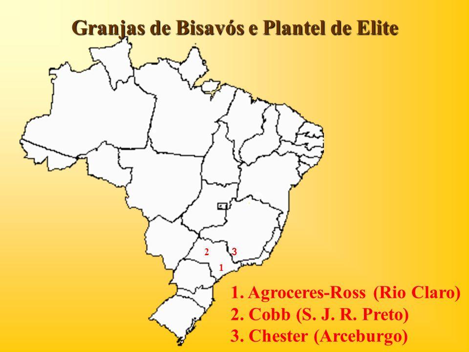 Granjas de Bisavós e Plantel de Elite