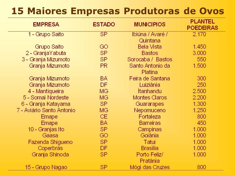 15 Maiores Empresas Produtoras de Ovos