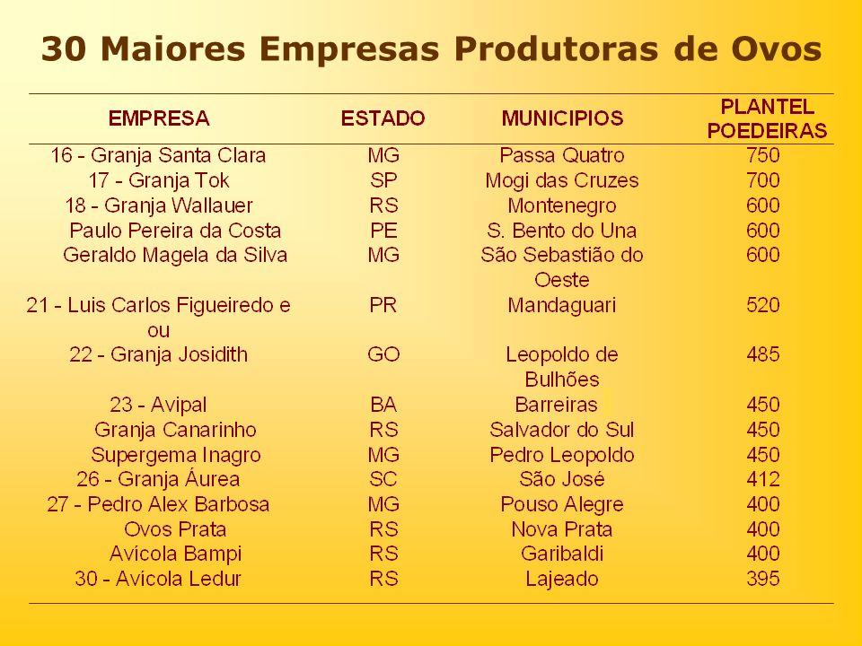 30 Maiores Empresas Produtoras de Ovos