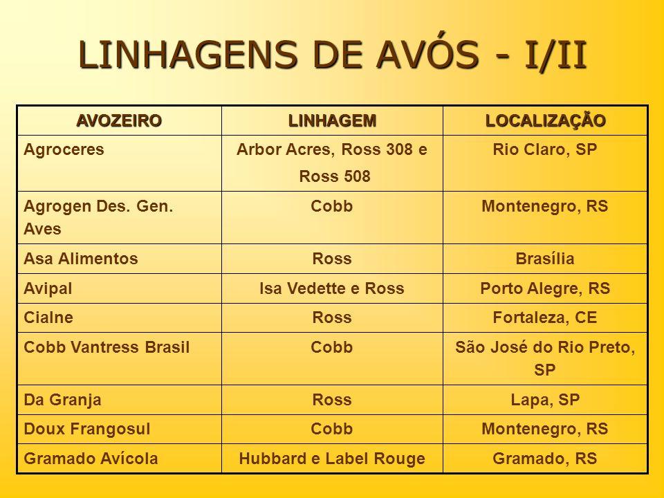 LINHAGENS DE AVÓS - I/II