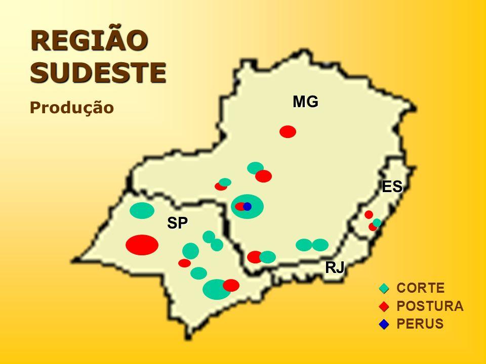 REGIÃO SUDESTE Produção MG ES SP RJ  CORTE  POSTURA  PERUS