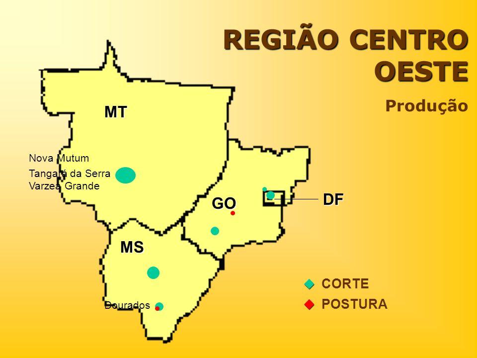 REGIÃO CENTRO OESTE Produção MT DF GO MS  CORTE  POSTURA Nova Mutum