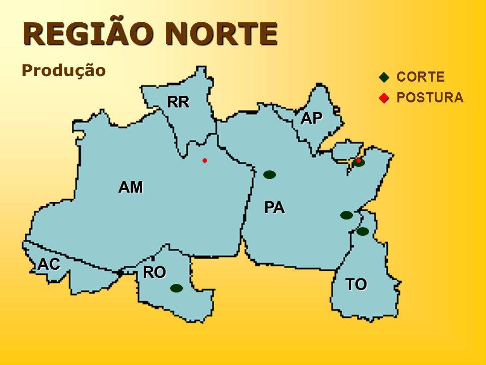 REGIÃO NORTE Produção  CORTE  POSTURA RR AP . . AM . PA . AC RO . TO