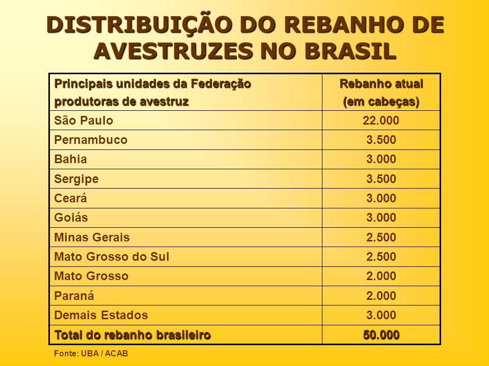 DISTRIBUIÇÃO DO REBANHO DE AVESTRUZES NO BRASIL