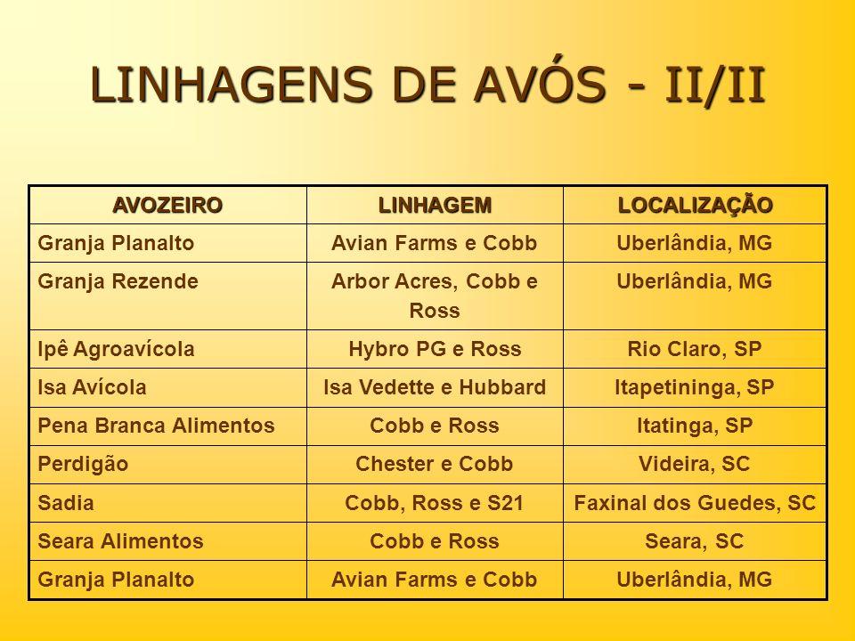LINHAGENS DE AVÓS - II/II