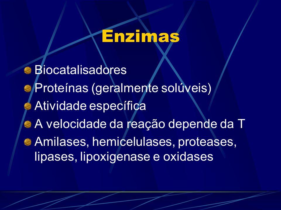 Enzimas Biocatalisadores Proteínas (geralmente solúveis)