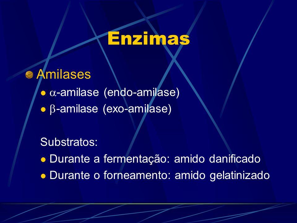 Enzimas Amilases -amilase (endo-amilase) -amilase (exo-amilase)