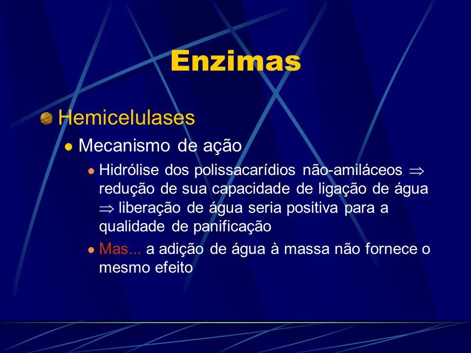 Enzimas Hemicelulases Mecanismo de ação