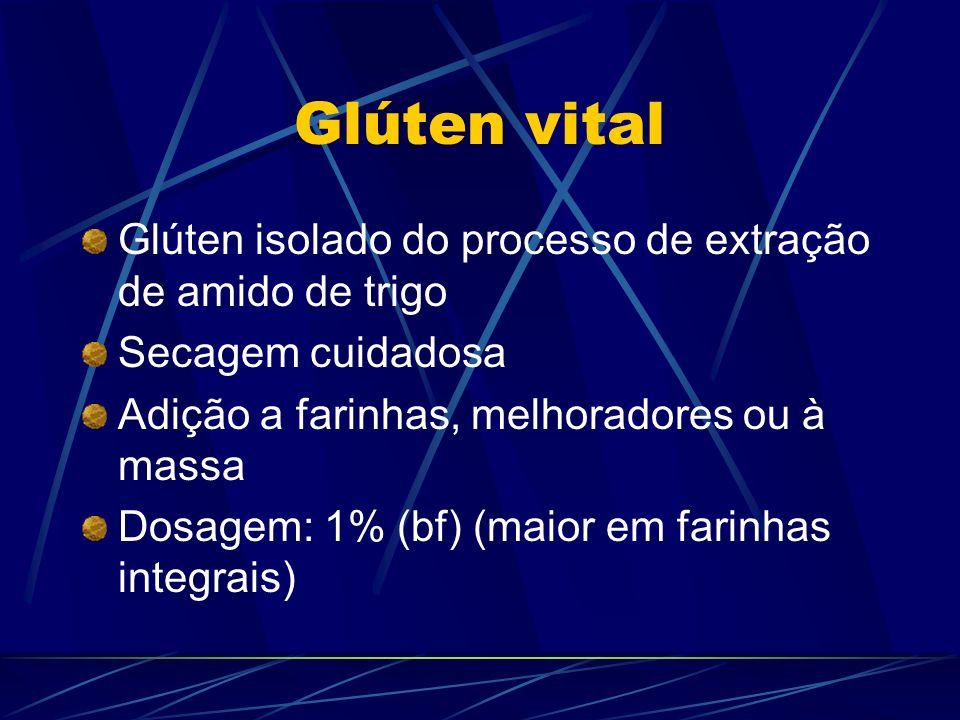 Glúten vital Glúten isolado do processo de extração de amido de trigo