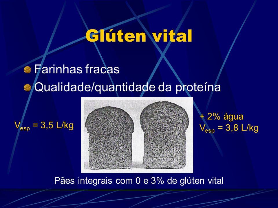 Glúten vital Farinhas fracas Qualidade/quantidade da proteína