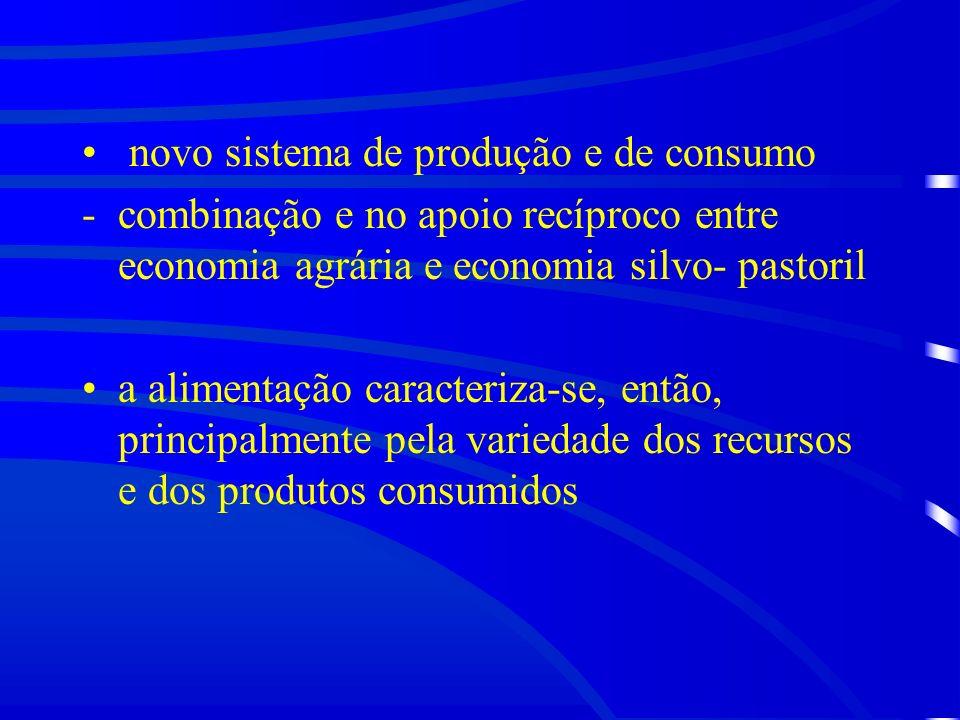 novo sistema de produção e de consumo
