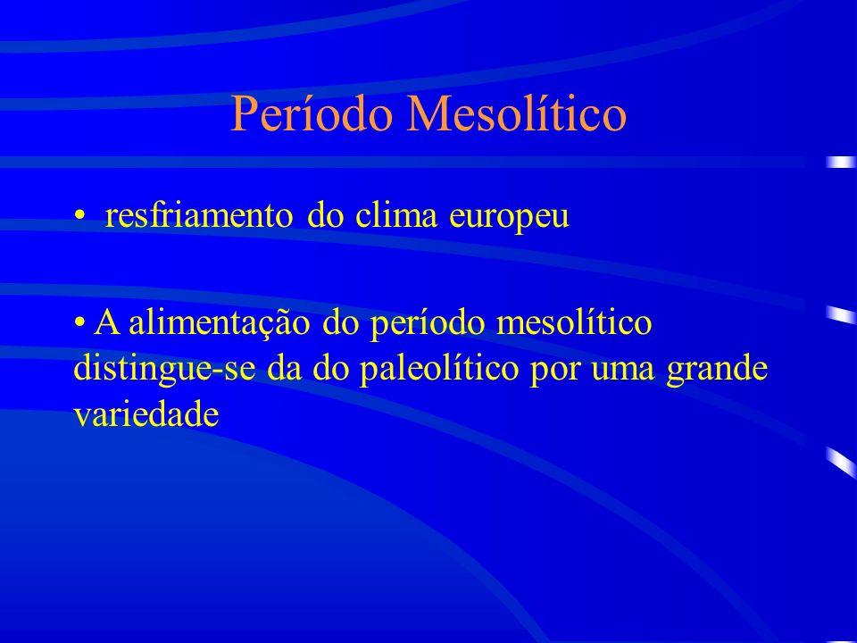 Período Mesolítico resfriamento do clima europeu