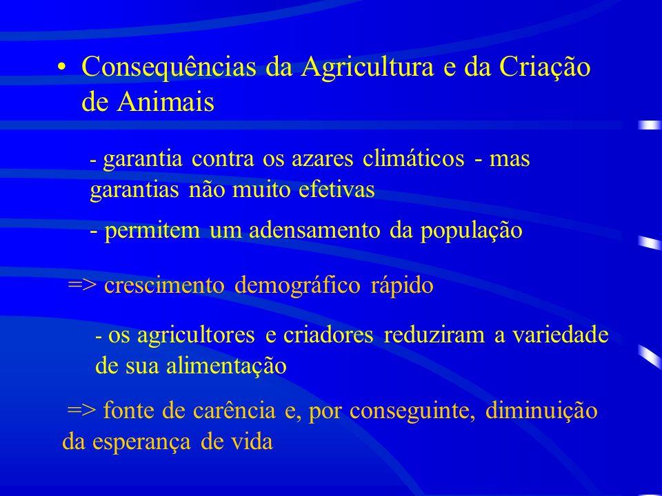 Consequências da Agricultura e da Criação de Animais