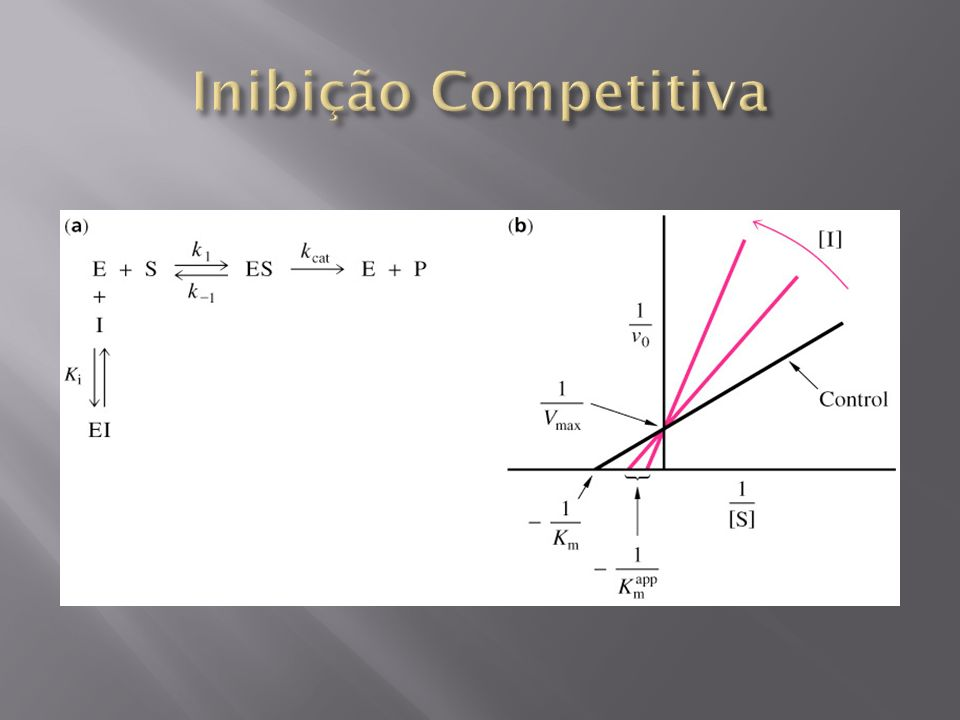 Inibição Competitiva