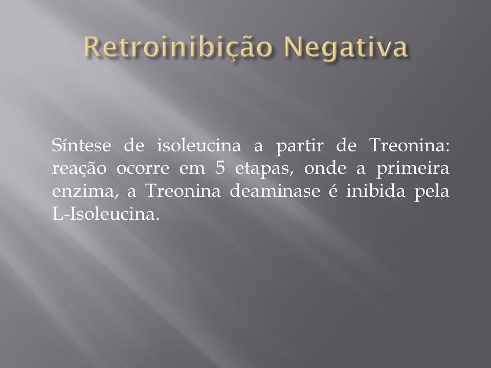 Retroinibição Negativa