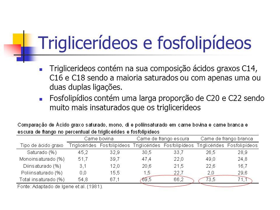 Triglicerídeos e fosfolipídeos